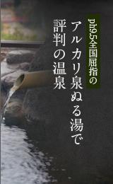 アルカリ泉ぬる湯で評判の温泉